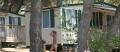 Camping Indije Mobil Homes