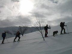 Ski Alpinizm